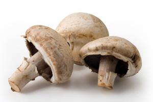 National Mushroom Day
