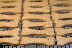 Baby Food Doggie Cookies and more recipes