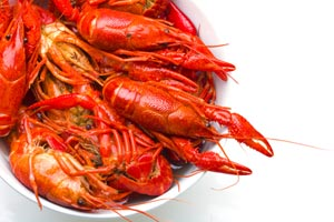 Crawfish Creole and more recipes