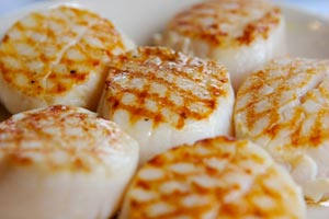 Japanese Steakhouse Scallops and more recipes